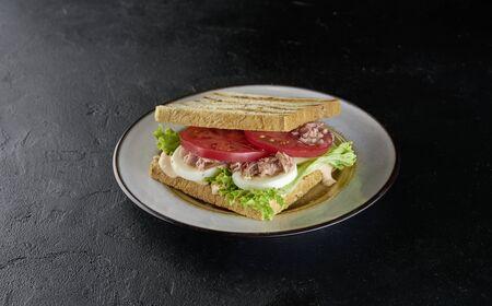 Testy tuna sandwich on black background Imagens