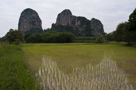 big mountain reflect photo