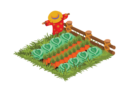Isometric Cartoon Vegetable Garden Bed with Scarecrow Planted with Cabbage and Carrot