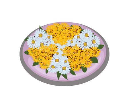 Isometric Cartoon Flower Bush Bed With Symmetrically Planted White and Yellow Daisies Illustration