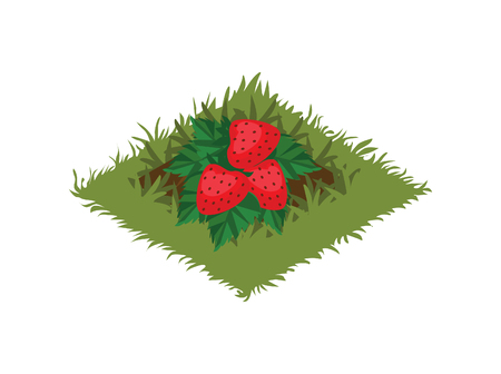 Isometric Cartoon Fruit Garden Bed Planted with Strawberry Bush Illustration