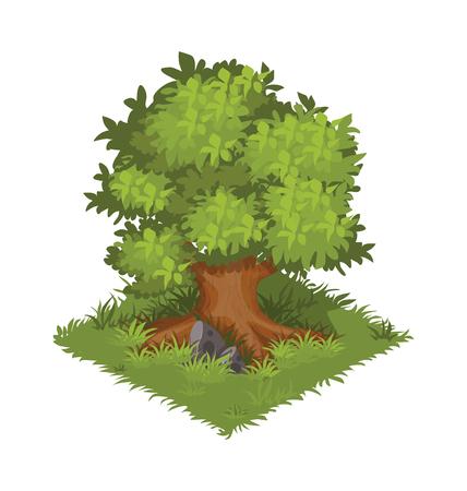 Isometric Cartoon Gigantic Oak Tree, Green and Bushy Çizim