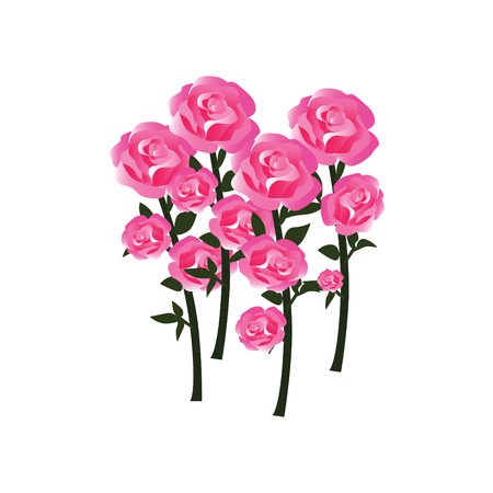 Tender Rose Blossoms with Stems as Fully Developed Flowers Illustration