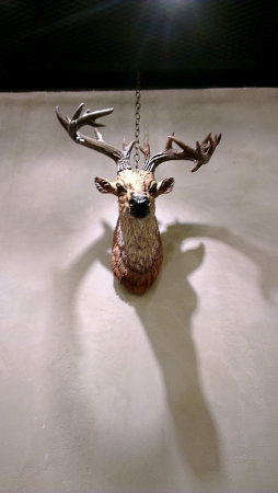 stuffed animals: Hanging a deer head.