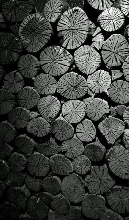 Charcoal wall