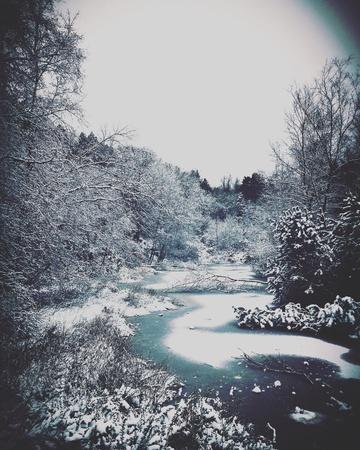 lancashire: Frozen pond in Rivington