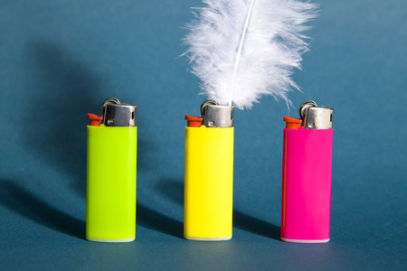 gas lighter: A feather in place of a flame on a lighter