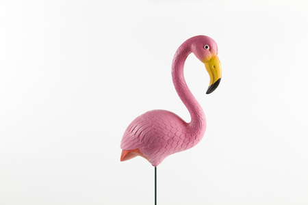 a pink plastic flamingo on a pink background. gradient and tones on tones