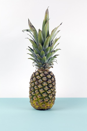 Playful pineapple on a pop bicolor background turquoise and white like horizon. Minimal design still life photography.