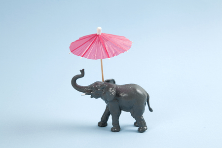 animal figurines: a plastic elephant with a red cocktail umbrella on a vibrant blue background. Minimal color still life photography Stock Photo