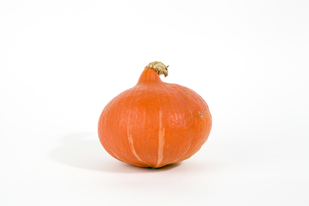 isolated pumpkin on a white background. Minimal still life photography