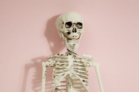 Isolated plastic toy skeleton a a vibrant pop pink background. Minimal color still life photography Stockfoto