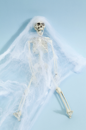 Plastic toy skeleton captured by a spider web on a vibrant pop blue background. Minimal color still life photography