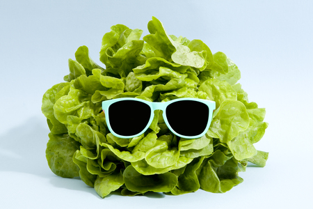 funky isolated lettuce wearing sunglasses on a pop vibrant blue background. Minimal color still life photography