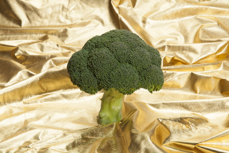 a broccoli tree in a gold fabric choppy waters. Luxury composition, metaphor of money and nuclear. Minimal color still life photography.
