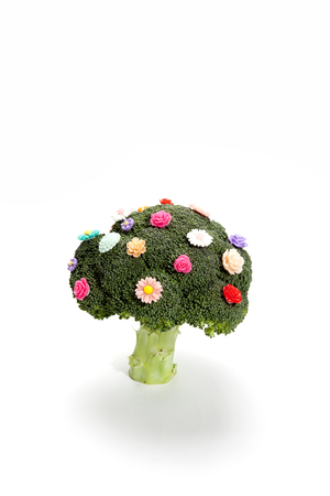 a diversion of a standing broccoli covered with numerous plastic flowers isolated on a white background. Humorous metaphor of a bouquet of flowers. Minimal color still life photography Imagens