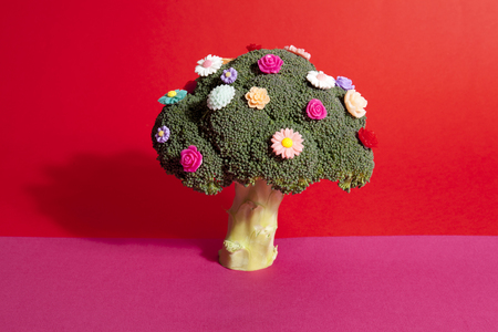 a diversion of a standing broccoli covered with numerous plastic flowers isolated on a vibrant pink and red background. Humorous metaphor of a bouquet of flowers. Minimal color still life photography