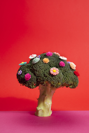 a diversion of a standing broccoli covered with numerous plastic flowers isolated on a vibrant pink and red background.