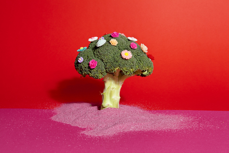 a diversion of a standing broccoli covered with numerous plastic flowers isolated on a vibrant pink and red background with sand arround it. Humorous metaphor of a bouquet of flowers. Minimal color still life photography