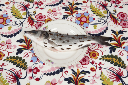 A bass fish with rosebush, thorns in a flower plate hidden on a flowery fabric. Camouflage game and diversion. Minimal color still life photography.