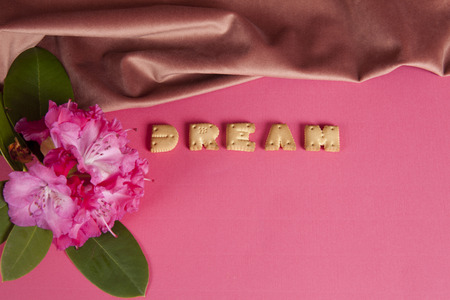 zoom of the word dream written in dry biscuit letters in front of a curtain of old pink velvet. Rhododendrons flower. Minimum color still life Stock Photo