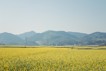 county: Luoping County, Yunnan province scenery