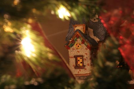 A house behind the christmas tree Stock Photo - 2379311