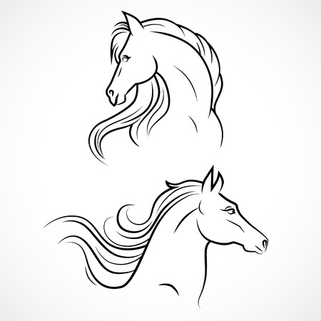 horse head: Vector silhouette of horses. Linear drawing