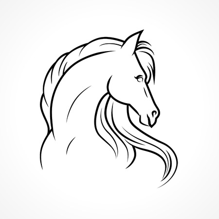 Vector sketch of horse Ilustrace