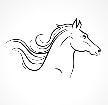 Vector silhouette of horse head Vector