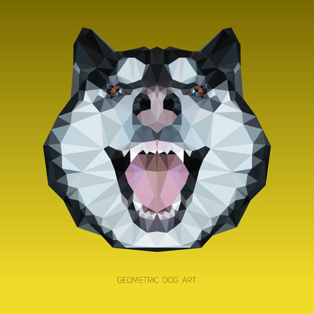 alaskan malamute: Geometric head of a dog with yellow background. Alaskan malamute