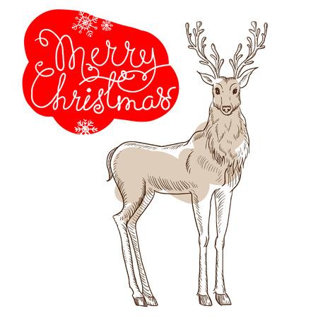 Christmas reindeer isolated on white background Xmas