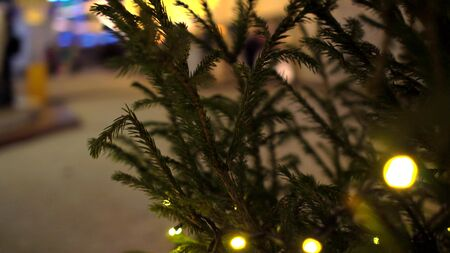 Circular movement of camera around row of Christmas trees decorated yellow luminous garlands on background of Christmas market blurry Outdoor Foto de archivo