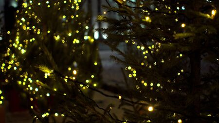Cute little Christmas trees decorated blurry yellow luminous garlands on Christmas market stalls background Outdoor