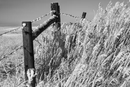 Winter Fence Banco de Imagens
