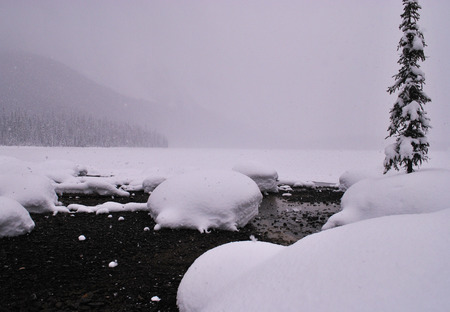 soft diffused light: Emerald Lake in winter