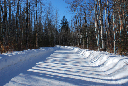 Winter Road Banco de Imagens
