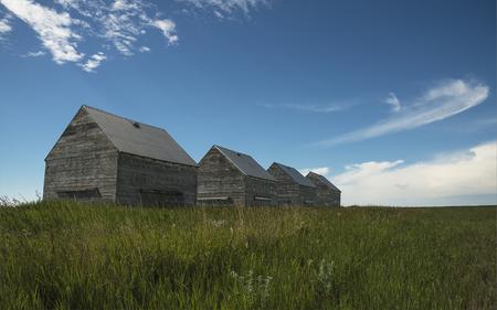Alberta sheds