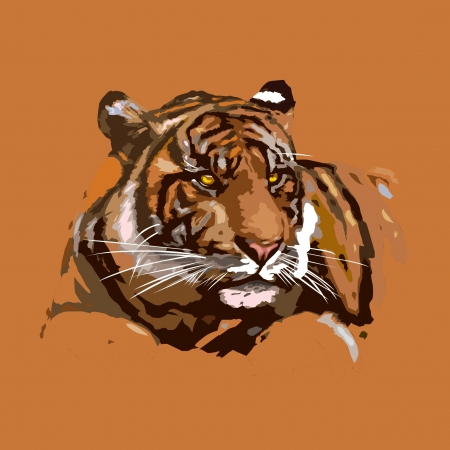 tiger Stock Vector - 21803458