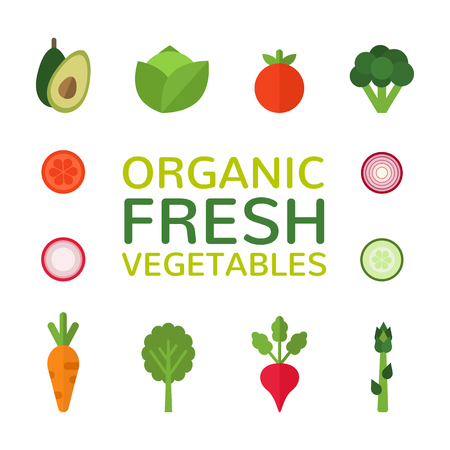 Organic fresh vegetables. Collection of flat vegetables. Healthy food design isolated on white background. Vegan menu. Vector illustration.  イラスト・ベクター素材