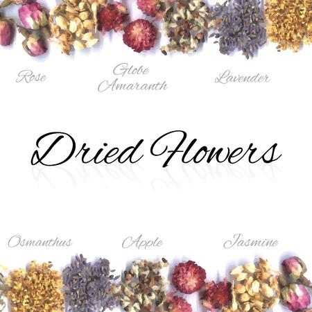 Gedroogde bloemen in rij Stockfoto - 88678519