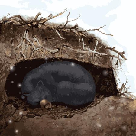 Bear sleeping in cave snowing Иллюстрация