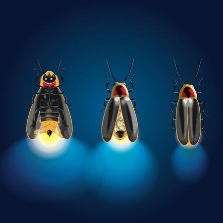 Fireflies or lightning bugs vector illustration Иллюстрация