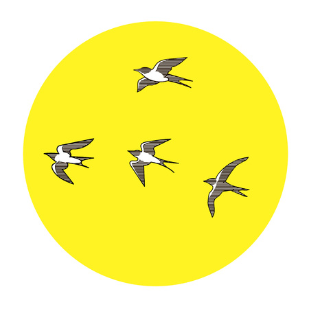 swallows: Illustration hand drawn swallows isolated on yellow sun and white background  vector eps 10 Stock Photo
