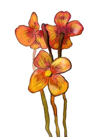 Nice bouquet  Stock Photo