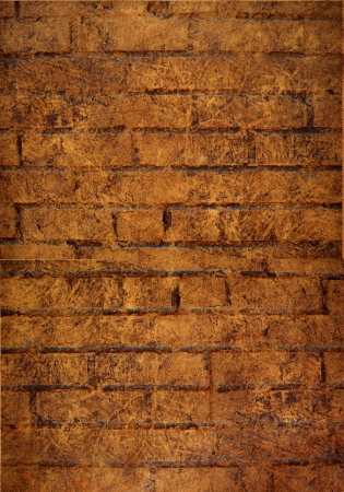 Grunge Brick wall background photo