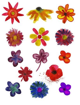 Set of Flowers painted in watercolor isolated on a white background