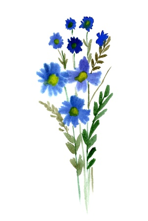 Blue Bouquet of watercolor flowers isolated on a white background Stock Photo