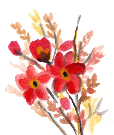 Red Flowers painted in watercolor  isolated on white