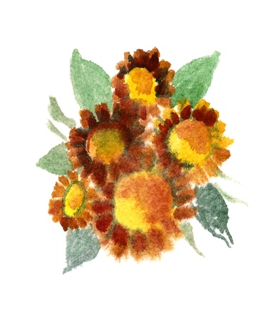 Bouquet of sunflowers painted in watercolor  isolated on white
